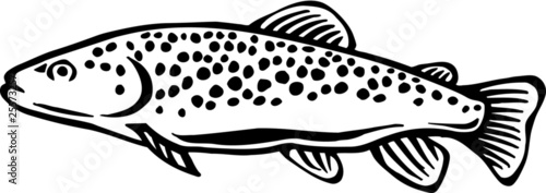 Brown Trout Vinyl Ready Vector Illustration