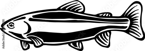 Rainbow Trout Vinyl Ready Vector Illustration