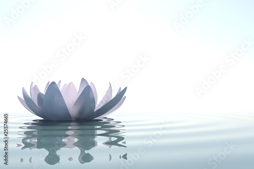 Fotobehang Meer Zen flower loto in water