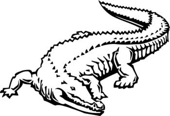 Alligator Vinyl Ready Vector Illustration