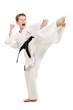 Karate Kick - 25581862