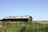 An old ranch with an old barn no longer used. poster