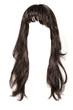 canvas print picture - black  hair