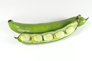 Broad Bean V2