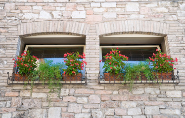 Two windows with flowerpots.