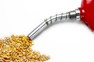 Filler up...with corn based ethanol
