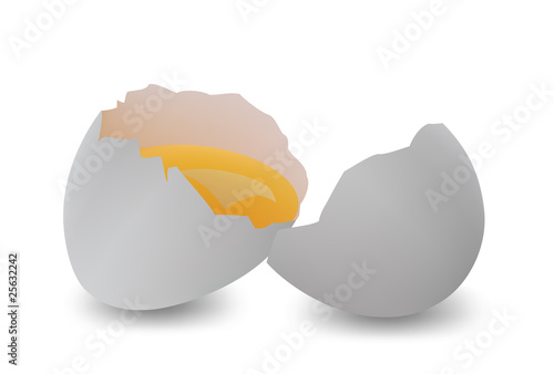 Broken egg. Vector illustration.