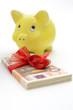 Sparschwein mit Geldgeschenk
