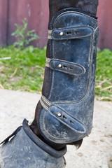 tendon boot detail