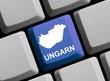 Ungarn im Internet