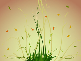 Plant and leaf background
