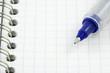 stylo gel bleu à bille sur page quadrillée de carnet à spirale