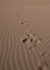 passi nel deserto