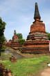 Ruins in Ayutthaya, Thailand.