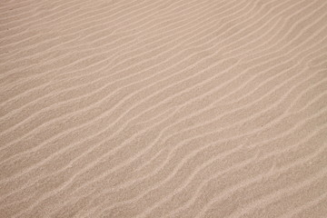 yellow sand texture background