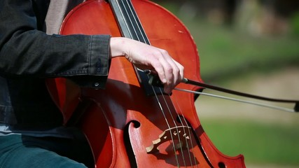 Woman plays on the cello on private open air concert