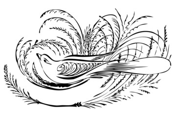 Bird Banner