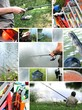 Histoires de pêche