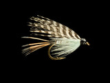 Blue Wet Trout Fishing Fly Isolated on Black