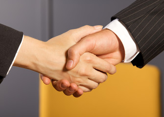 Close-up of businessman and woman shaking hands in office