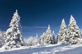 Fototapety Wintermärchen