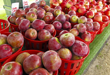 Organic Apples displayed at farmers market