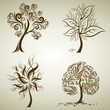 Vector set 5 of designs with tree from leafs. Thanksgiving