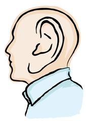 testa con grande orecchio