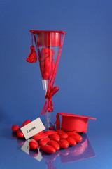 Bomboniera e confetti per laurea