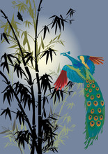 bamboo and peacock illustration