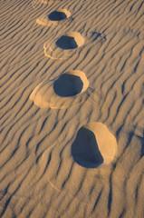 trace dans le sable