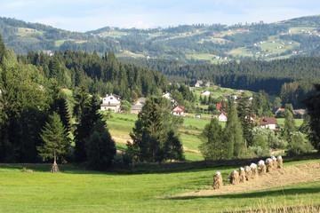 Landscape - Istebna, Beskidy Mountain View