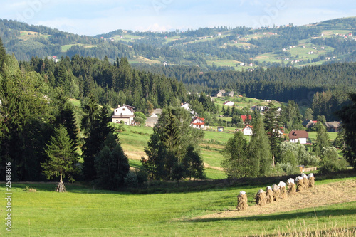 Landscape - Istebna, Beskidy Mountain View - 25818816