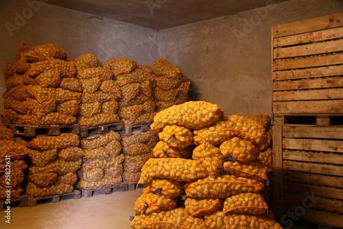 einlagerung von kartoffeln