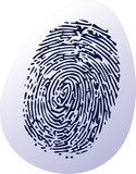 thumbprint on egg shell