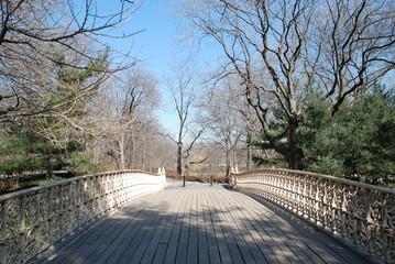 Bridge in central park, New York city