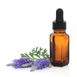 Lavender Herb Flower Essence