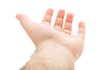 Empty Hand Isolated