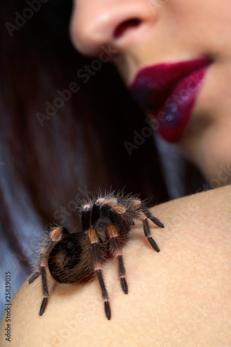 spider Brachypelma smithi on girl's shoulder