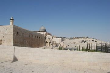 Релия Израиль