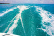 Holiday Paradise - 25860693