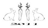 Rabbit is symbol 2011