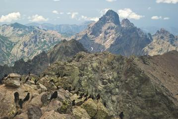 Corsica, panorama dalla Vetta del Monte Cinto ( 2707 m) 7