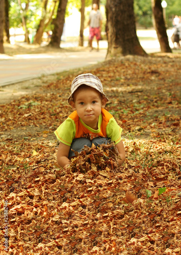 The little boy plays with autumn leaves