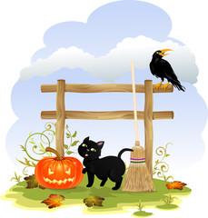 Zucca gatto e corvo