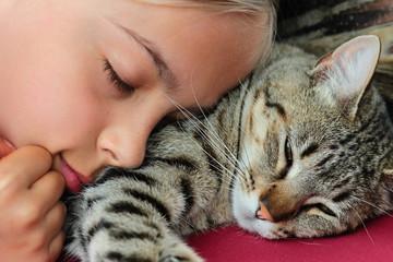 sieste avec le chat