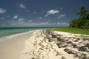 Les petites Salines - Martinique