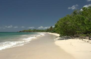 Plage déserte - Martinique