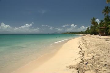 Longue plage en Martinique