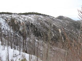 Mt. Lemmon 2